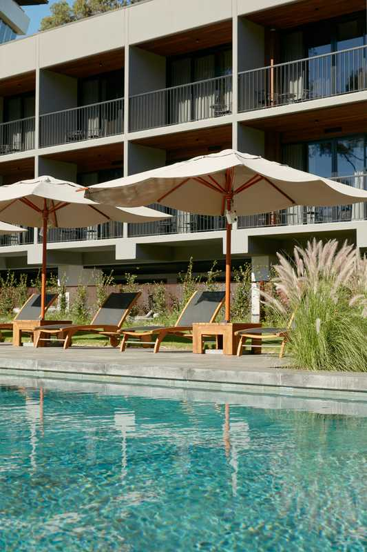 Deck chairs overlook the hotel's pool