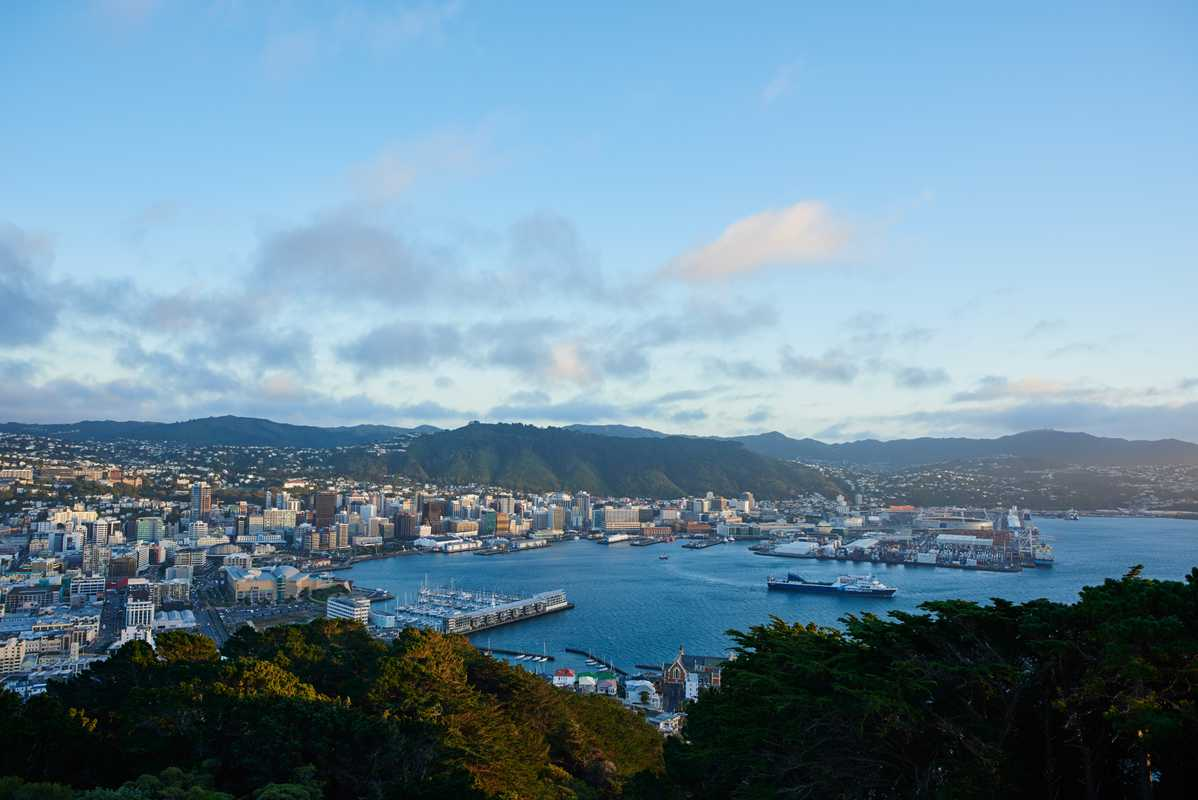Wellington as viewed from Mount Victoria