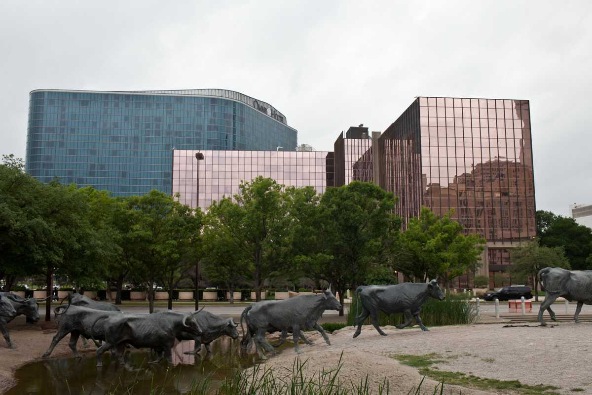 Pioneer Plaza cattle sculptures